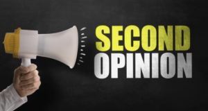 Second Opinion Service for IT Network and IT Security